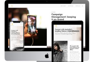 WordPress Marketing website