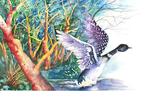 Portfolio for Nature & Animal Illustration
