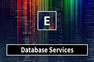 Portfolio for Database Services
