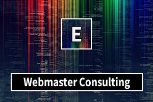 Portfolio for Webmaster Consulting