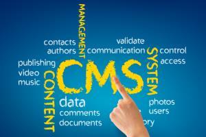 Portfolio for Content Management Systems