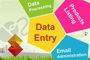 Portfolio for Data Entry, Product Listing & Management