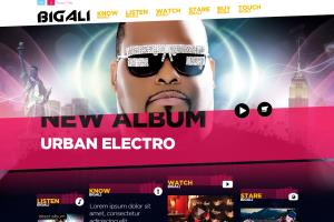Cusotm WordPress Music Celebrity Website Design