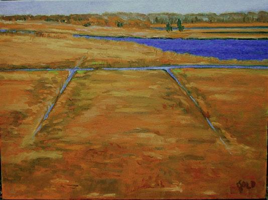 Portfolio for Landscape Painting