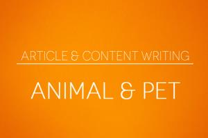 Portfolio for Article & Content Writing