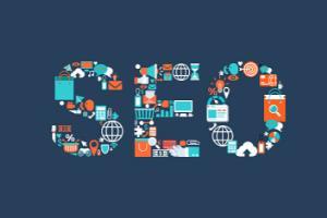 Portfolio for SEO and SMO Services