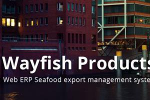Portfolio for ERP Software Development