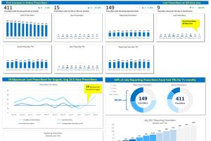 Portfolio for Reporting and Data Analytics Solutions