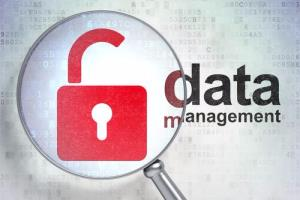 Portfolio for Data Management Services