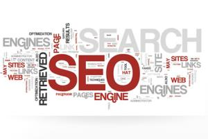Portfolio for SEO Consulting