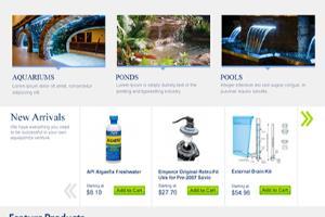 Portfolio for Website Design and Development