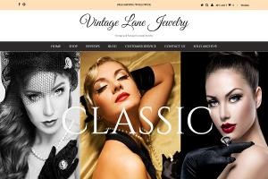 Portfolio for Shopify Store and Websites Design