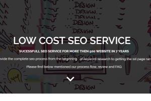 Portfolio for SEO Service