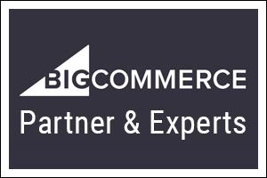 Portfolio for Bigcommerce Store Design and Development