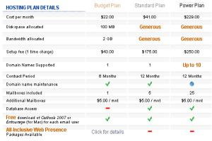 Portfolio for Website Hosting Budget Plan