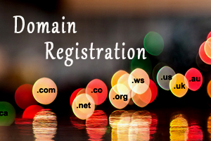 Portfolio for Domain Registration