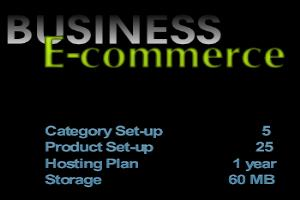 Portfolio for Business E-commerce