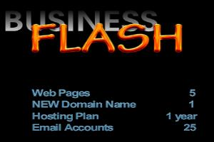 Portfolio for Business Flash