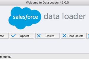 Portfolio for Salesforce Data Migration