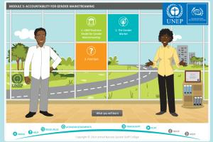 UNEP eLearning Program
