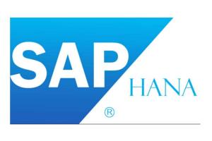 Portfolio for SAP HANA Consulting & Support