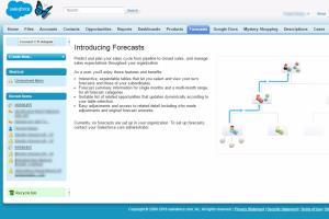 Portfolio for Salesforce service