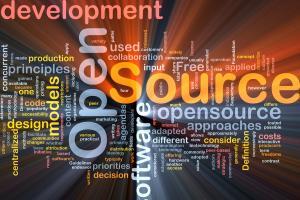 Portfolio for Open Source Development