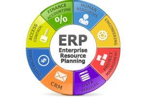 ERPNext by Top Guru Mobile App Developer 585265 - Freelancer