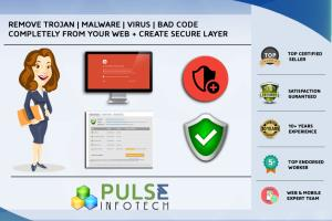 Portfolio for Virus Removal From your Website