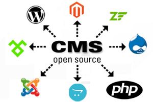 Portfolio for DYNAMIC WEBSITE DEVELOPMENT (CMS)