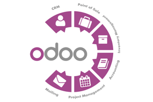 Portfolio for Odoo/ ERP Development