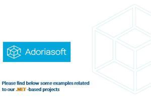 Portfolio for .Net development