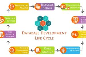 Portfolio for Database Design and Development