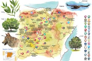 Portfolio for Customized maps