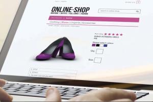 Portfolio for eCommerce Magento Custom Dev Detroit MI