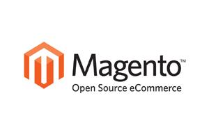 Portfolio for Magento CE Website Development
