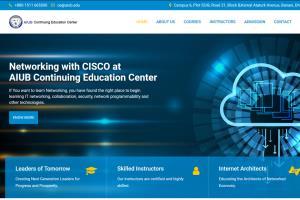 Portfolio for Website Redesign and Maintenance