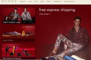 Portfolio for Ecommerce  website