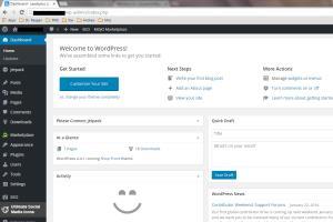 Portfolio for WordPress Blog Management