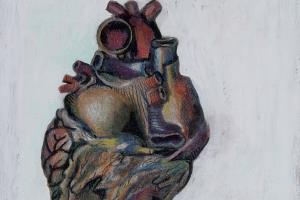 Portfolio for Medical Illustration