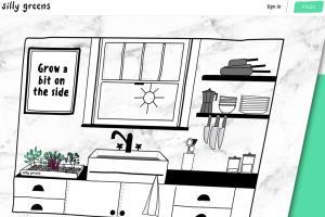 Portfolio for Responsive DIVI Website by CoderKube