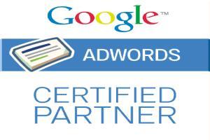 Portfolio for Google Adwords/ PPC / Shopping Ads