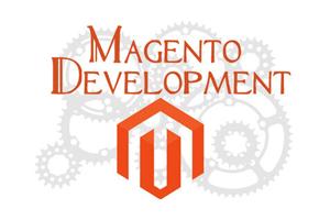 Portfolio for Web Development, Magento Ecommerce