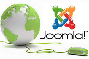 Portfolio for Joomla Expert