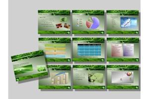 Portfolio for PowerPoint Presentations