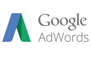 Portfolio for Google Adwords Pay per Click