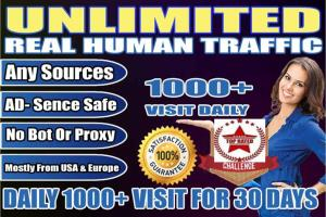 Portfolio for Drive 1000 USA Traffic Daily for 30 Days
