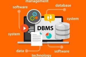 Portfolio for Database Design & Planning