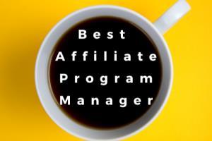 Portfolio for Best Affiliate Program Manager