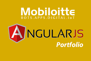 Portfolio for AngularJs Development